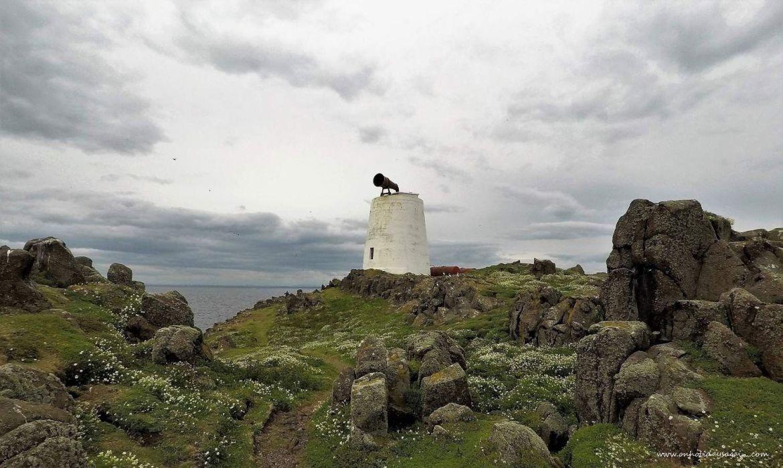 Paysage de l'Ile de May en Ecosse