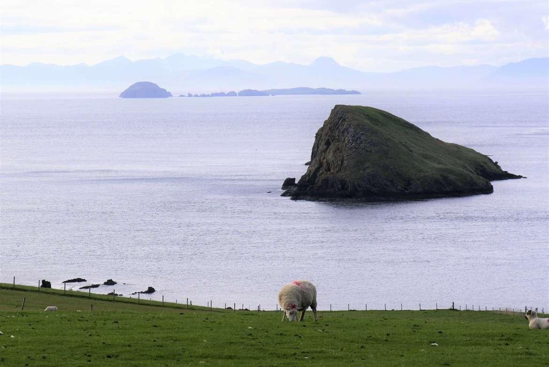 Les champs de l'Ile de Skye