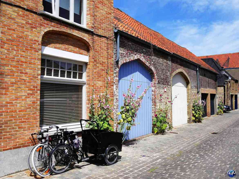 Rue typique de Bruges en Belgique