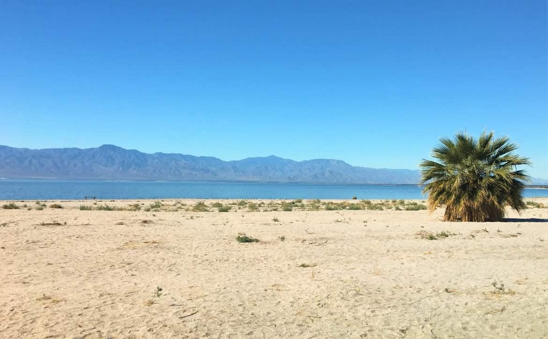 Plage du Salton Sea pour visiter la Californie autrement