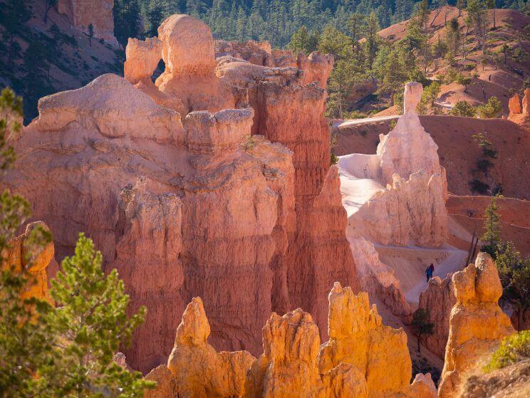 Lumière matinale sur les hoodoos à Bryce Canyon