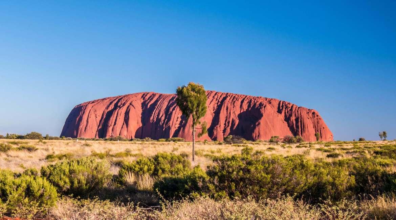 Vue sur Uluru depuis le coach sunset viewing area