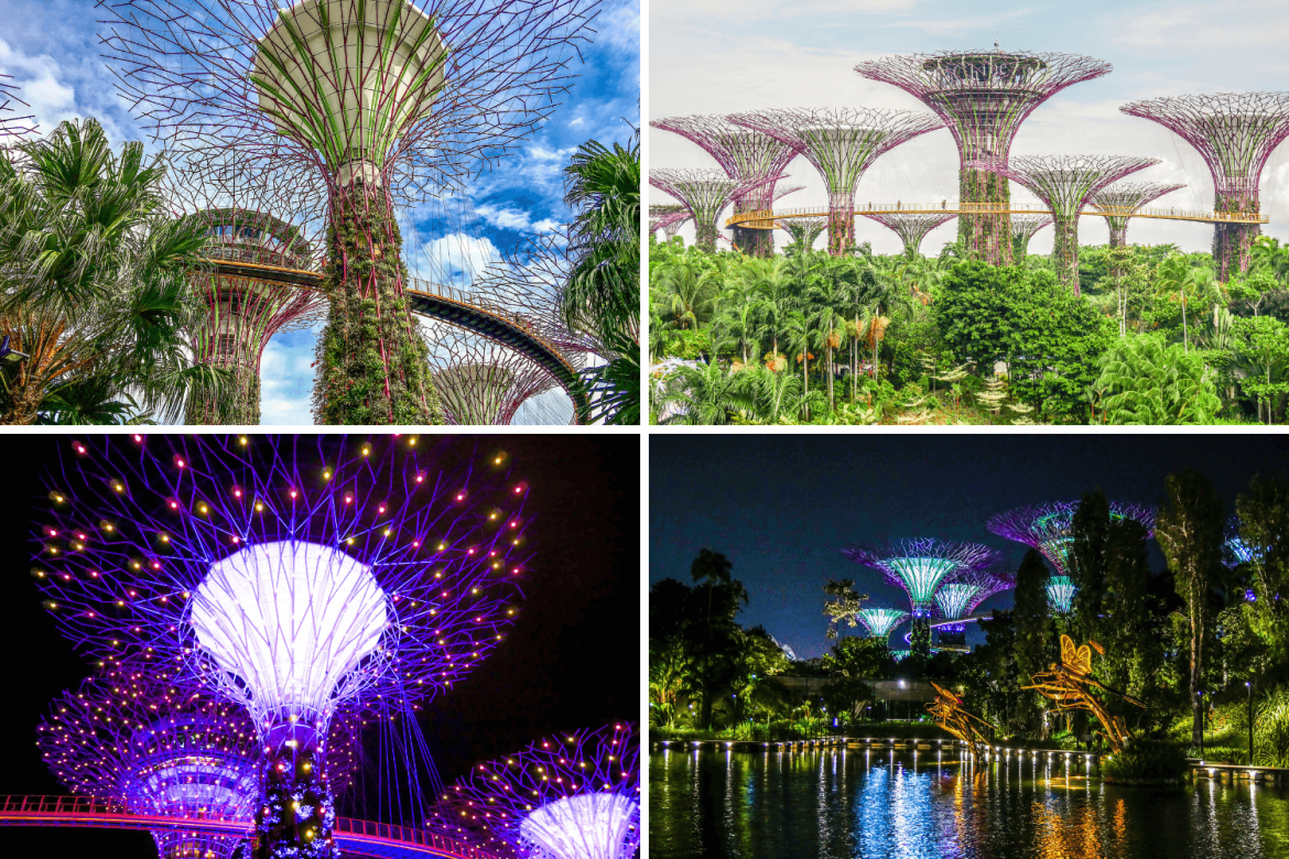 Supertrees Garden by the bay Singapour