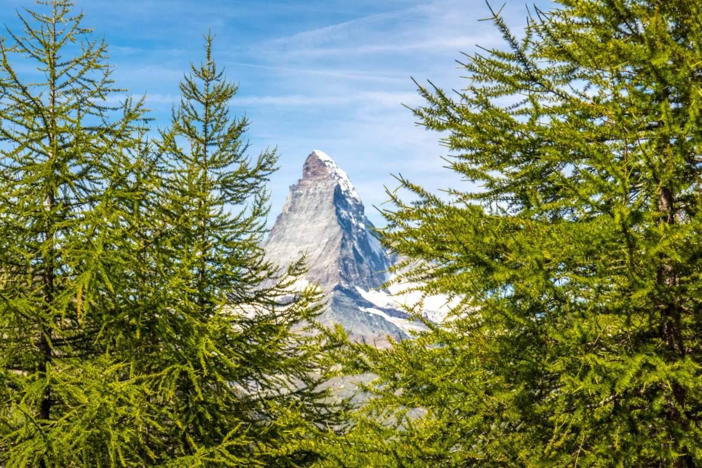 Voir le Cervin depuis la forêt Zermatt