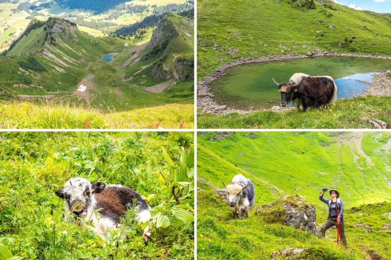 Sentier des trois lac randonnée lac Lioson Pic Chaussy