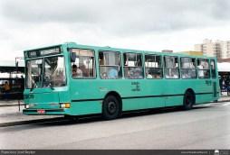 DB019-CristoRei