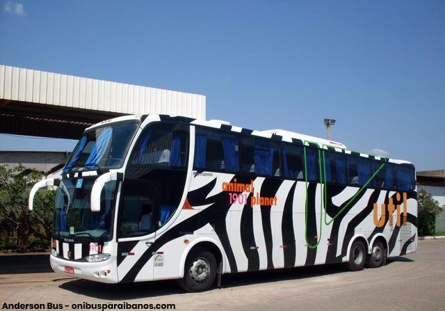 util-1091-zebra