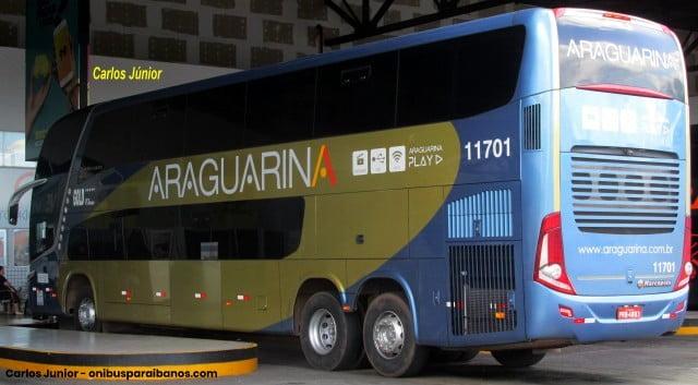 ARaguarina 11701