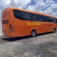 Novos ônibus da Rio Tinto já estão prontos e numerados
