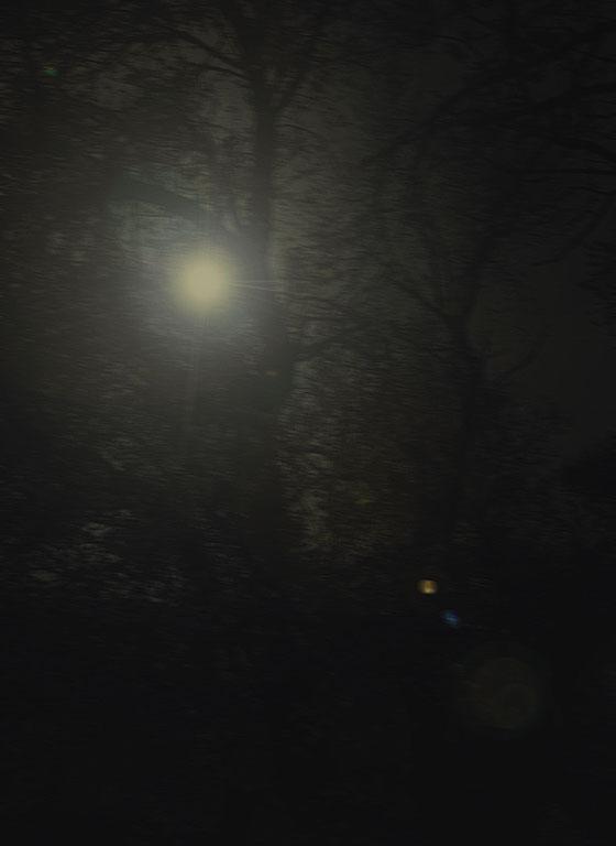 Guadalupe 054 Gotica - 4 clair de lune