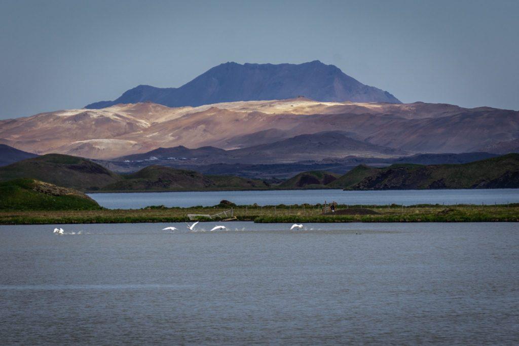 Le lac Myvatn en Islande