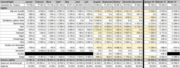 Sammanställning av 2015 års inkomster och utgifter.