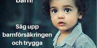 barnförsäkring ja eller nej