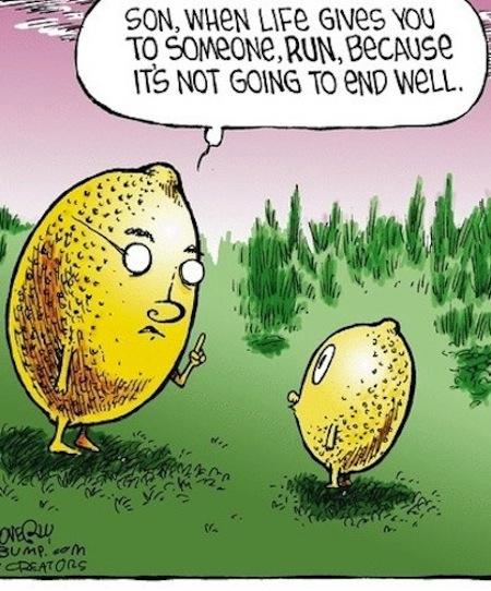 life-lemons-joke-pic