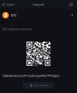 ビットコインアドレスの確認