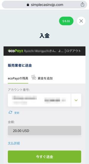 シンプルカジノ 入金手順 ecoPayz
