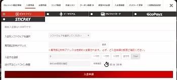 パイザカジノ入金申請詳細