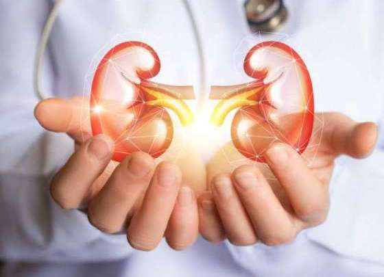 Get-Rid-of-Kidney-Diseases