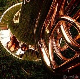 grass+brass