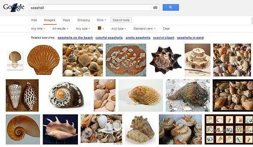 Google images images
