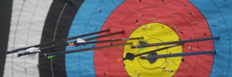 Some-arrows-in-the-target