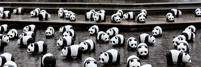 Panda-Invasion