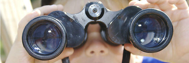 Binoculars are like a website's site search