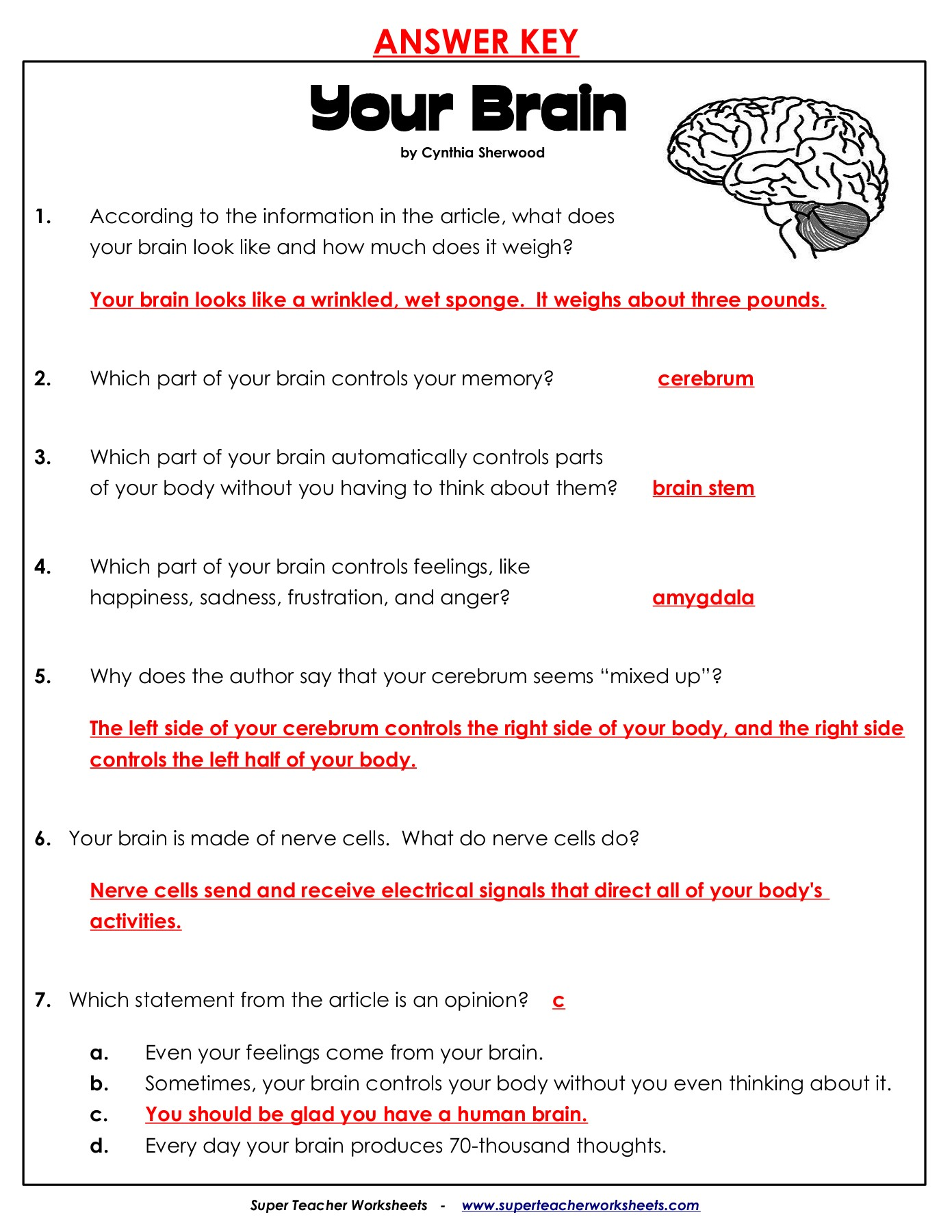 Printables Of Super Teacher Worksheets Com