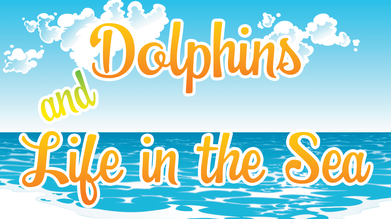 Dolphins and Life in the Sea