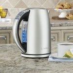 Cuisinart-CPK-17-PerfecTemp-17-Liter-Stainless-Steel-Cordless-Electric-Kettle-0-1