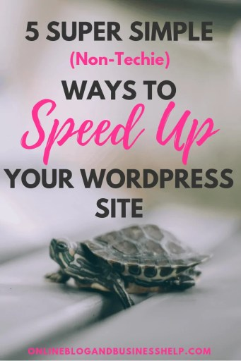 "Turtle below the text ""5 Super Simple Non Techie Ways to Speed Up Your WordPress Site"""