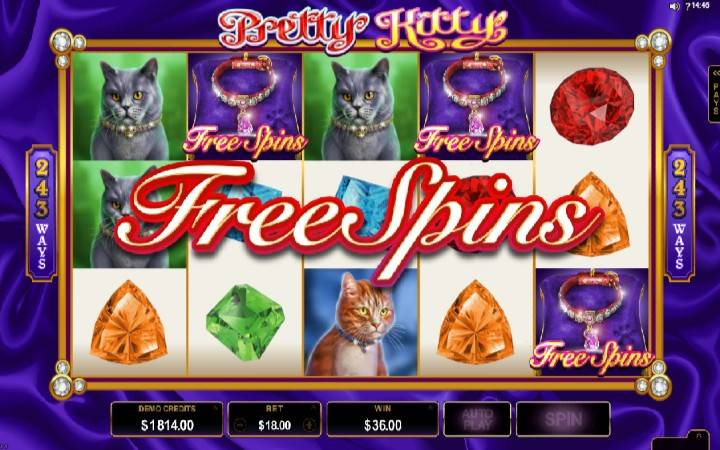 Pretty Kitty, online casino bonus