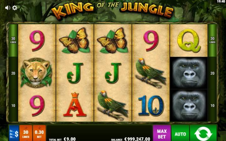 King of The Jungle, Gamomat, Online Casino Bonus