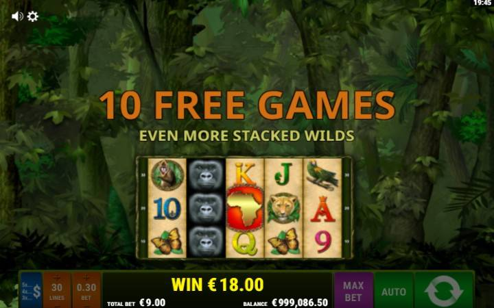 Besplatni Spinovi, Online Casino Bonus, Scatter, King of The Jungle