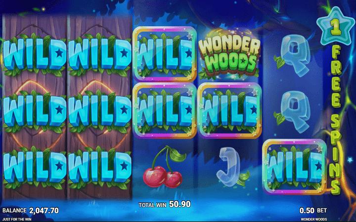 Wonder Woods, Microgaming, Online Casino Bonus