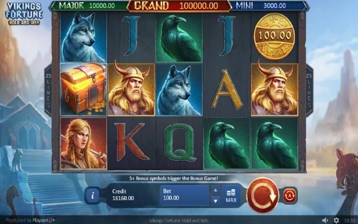 Vikings Fortune: Hold and Win, Playson, Online Casino Bonus