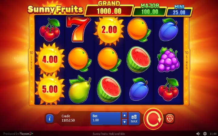 Sunny Fruits: Hold and Win, Playson, Online Casino Bonus