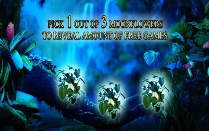 Moonflowers, Secrets of the Amazon, Online Casino Bonus