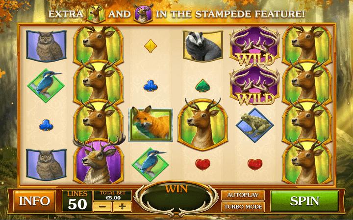 Forest Prince, Playtech, Online Casino Bonus