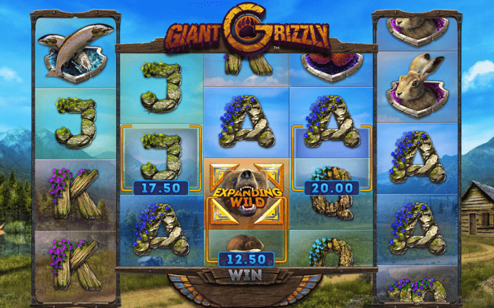 Giant Grizzly, Playtech, Online Casino Bonus