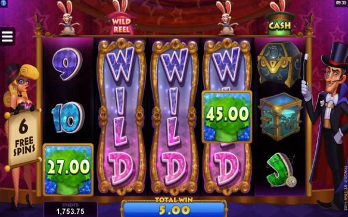 Wild Reel-online casino bonus-Rabbit in the hat