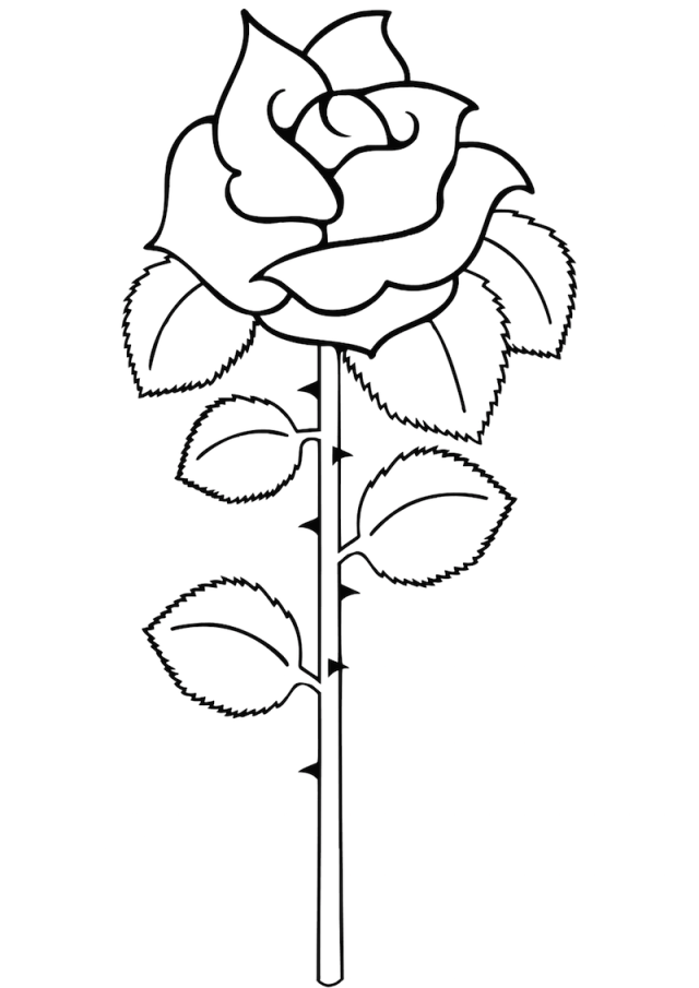 simple-rose-coloring-page - Online Coloring Pages