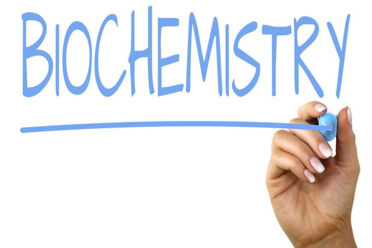 biochemistry courses