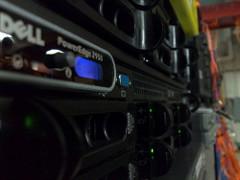 server hosting photo