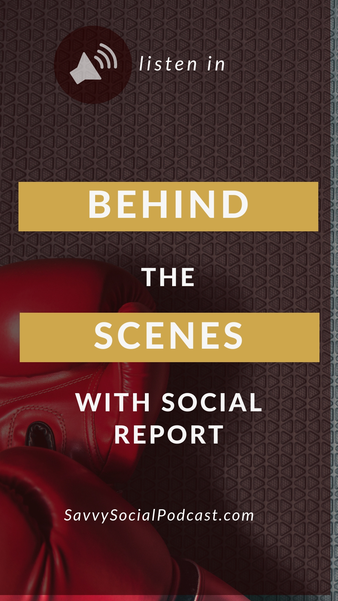 Behind-the-Scenes with Social Report