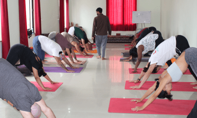 yoga teacher training