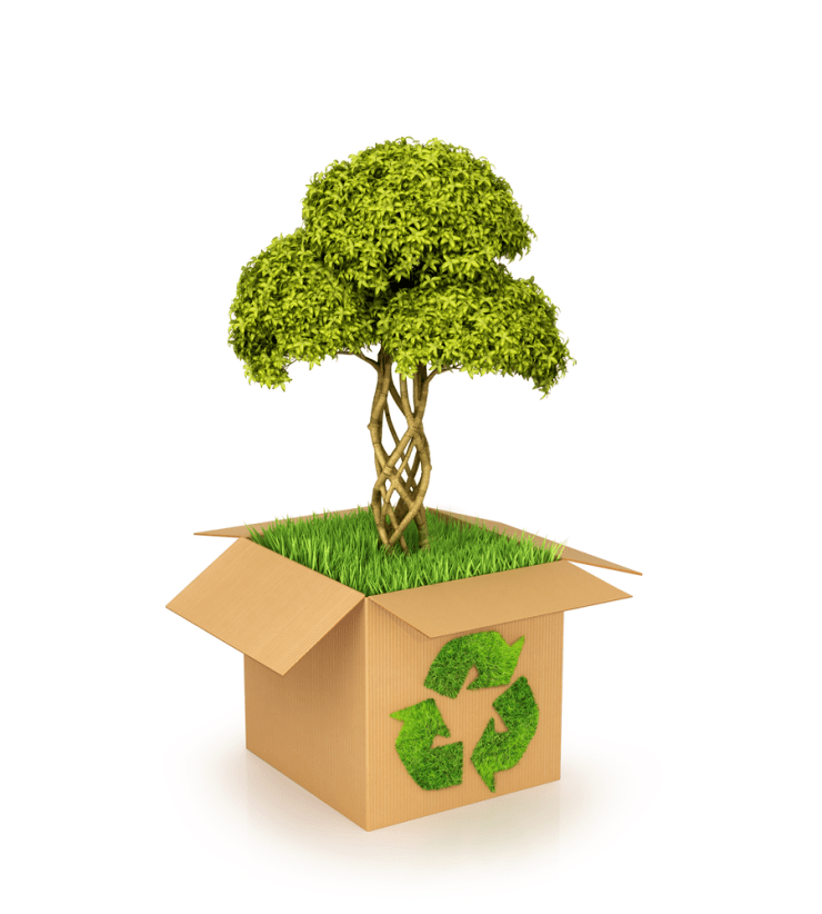 Nothing can be better than Eco-friendly boxes 4