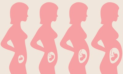 Pregnancy And Its Trimesters