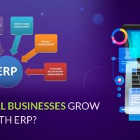 How Can Small Businesses Grow with ERP?