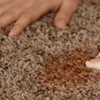 Best Ways for Stain Removal from Carpets